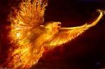 phoenix-rising-